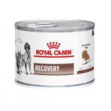 خوراک کاسه ای ریکاوری سگ و گربه رویال کنین 195 گرم
