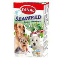 مکمل غذایی سگ به همراه جلبک دریایی سانال