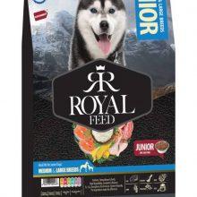 غذای خشک سگ رویال فید مخصوص سگ های جونیور نژاد بزرگ