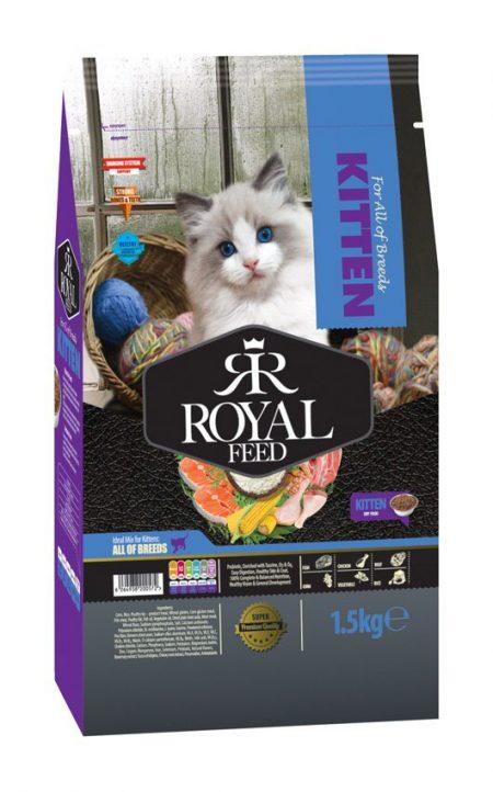 غذای خشک رویال فید بچه گربه