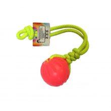 اسباب بازی کنفی جهت بازی و دندانگیر همراه با توپ